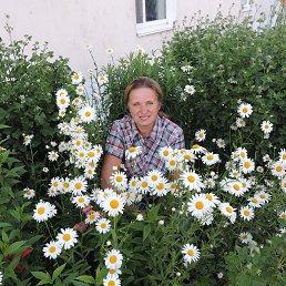 Татьяна, 59 лет, Вязьма