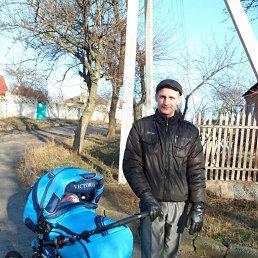 Дмитрий, 30 лет, Светловодск