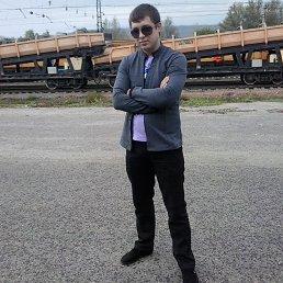 илья, 27 лет, Барыш