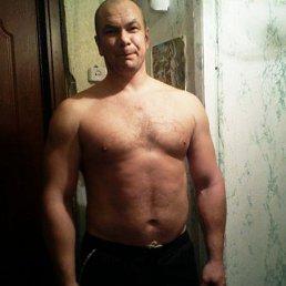 Михаил, 43 года, Зеленогорский