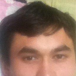 Макс, 34 года, Одинцово
