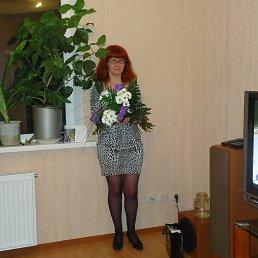 Анна, 38 лет, Ломоносов
