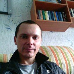 Миха, 27 лет, Егорлыкская