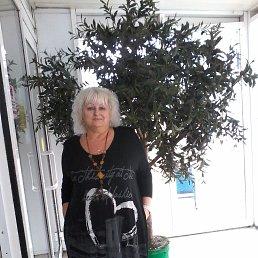 Елена, 59 лет, Енакиево