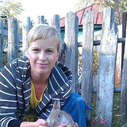 Елена, 41 год, Рошаль
