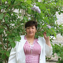 Наталья, 60 лет, Светлогорск