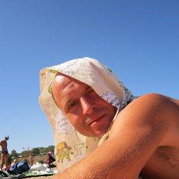 александр, 41 год, Струнино