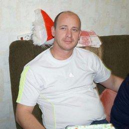 Евгений, 42 года, Тербуны