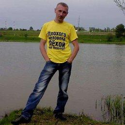 Алексей, 36 лет, Руза