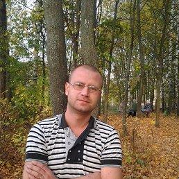Михаил, 33 года, Струнино