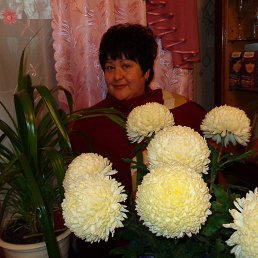 Алла, 55 лет, Красный Лиман
