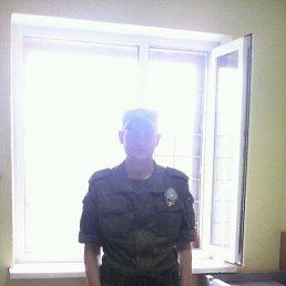 Евгений, 29 лет, Подольск