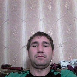 дима, 29 лет, Цивильск