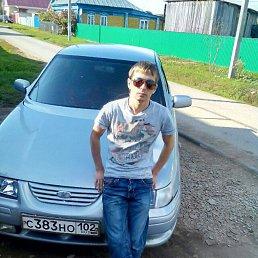 Николай Фролов, 29 лет, Бакалы