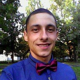 Дмитрий, 29 лет, Слуцк