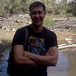 Vladimir, 32 года, Беловодск
