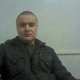 Олег, 36 лет, Дедовичи