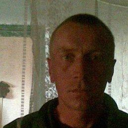 Сергей, 37 лет, Щорс