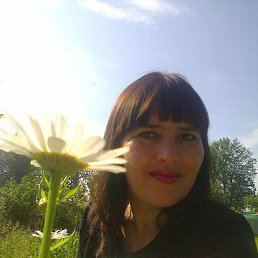 Светлана, 46 лет, Белев
