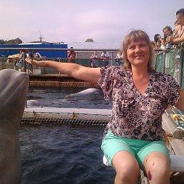 На море 2015 год. В дельфинарии.