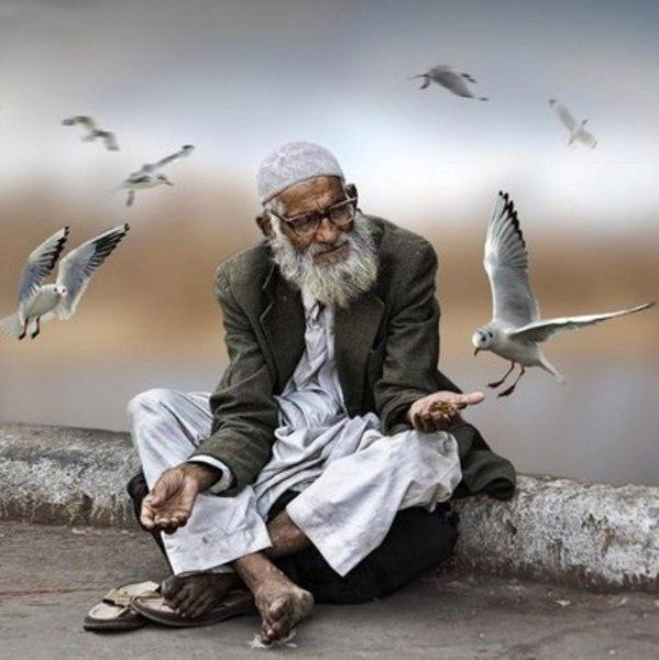 картинки про мудрейших людей слагающие его