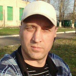 Николай, 43 года, Шаблыкино