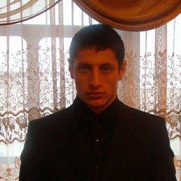 артем, 39 лет, Володарск