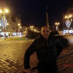Фото Виталий, Мелитополь, 43 года - добавлено 21 марта 2016