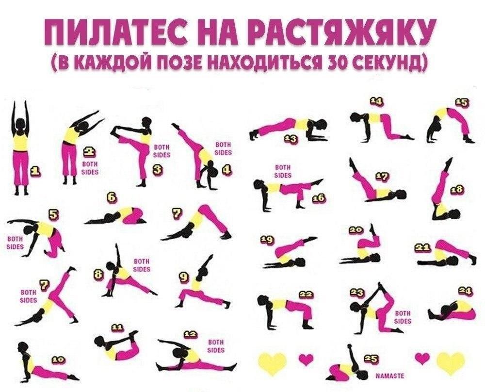 модницам стоит пилатес комплекс упражнений в картинках иркут пусть