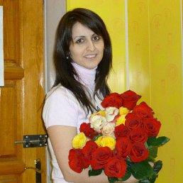 Диана, 36 лет, Курск