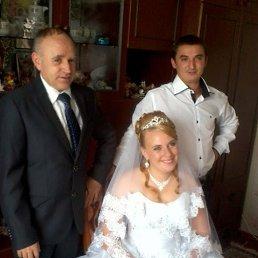 володимир, 63 года, Волочиск