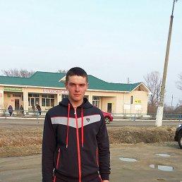 Илья, 24 года, Новошахтинский