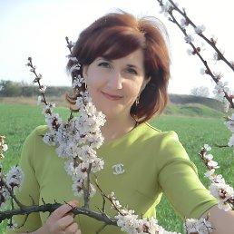 Татьяна, 36 лет, Ждановка