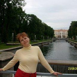 Ольша, , Калининград