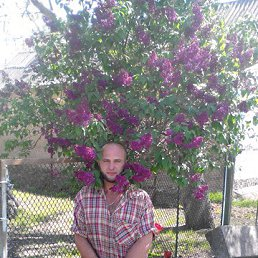 Виктор, 34 года, Володарка