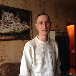 Роман, 41 год, Талдом