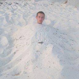 Саша, 28 лет, Коростышев