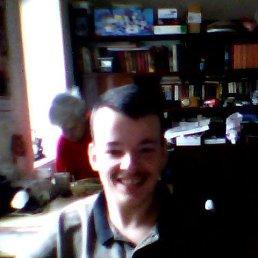 Миша, 28 лет, Лисичанск