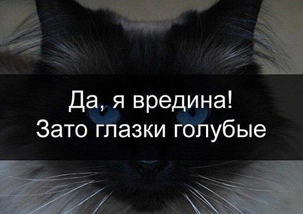 Открытки с надписями вредина, картинки советская открытка