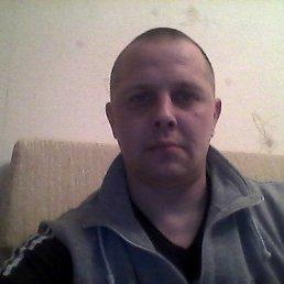Михаил, Светлогорск, 42 года