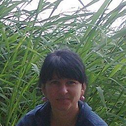 Антонина, 42 года, Беляевка