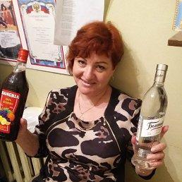 Галина, 59 лет, Волхов