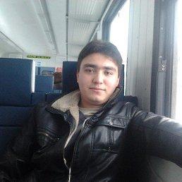 Sardor, 31 год, Раменское