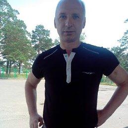 sergey, 54 года, Зеленогорск