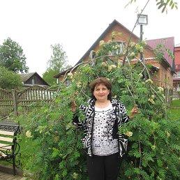 Светлана, 51 год, Великие Луки