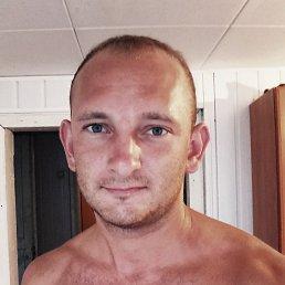 Миша, 29 лет, Каменск-Шахтинский