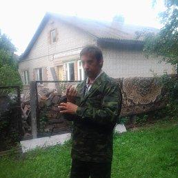 денис, 47 лет, Бронницы