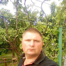 Александр, 40 лет, Снигиревка