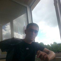 Александр, 28 лет, Гвардейск