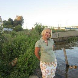 ирина, 63 года, Кимры